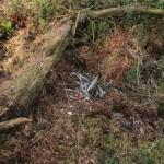 Plukplaats vos - afgebroken spoelen