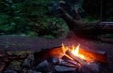 Vuur Soorten