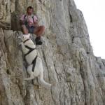 hond-en-buitensport-12