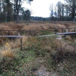 Wandelen-rondom-Doorwerth-04