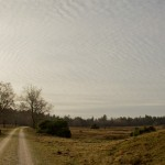 Schaapskooi-Loenen-13