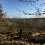 Utrechtse-Heuvelrug-Kwintelooyen-16