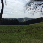 Winterberg-Mountainbike-Route-11-8