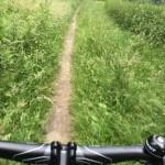 MTB-Maashorst-groene-route-05