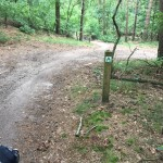 MTB-Maashorst-groene-route-07