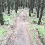 MTB-Maashorst-groene-route-09